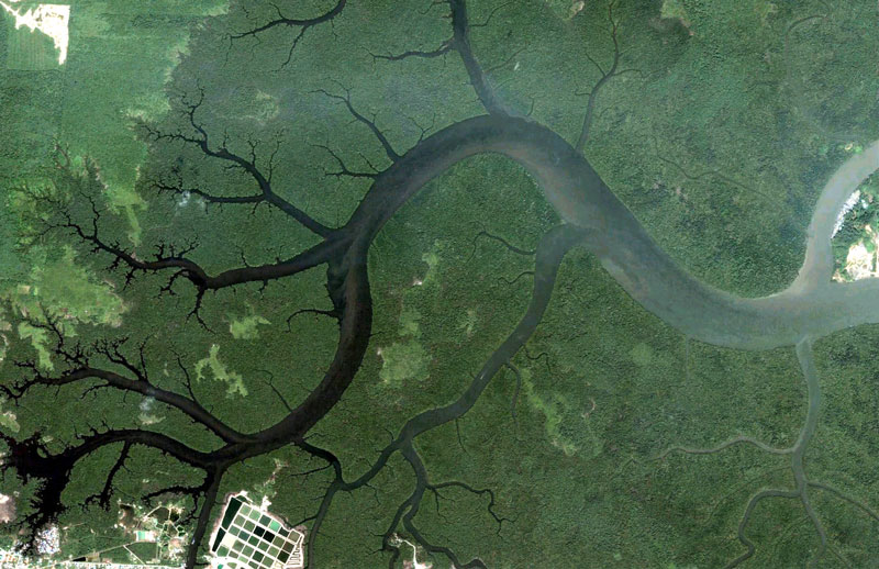 Tumblr - kuching-malaysia-google-earth-fractals