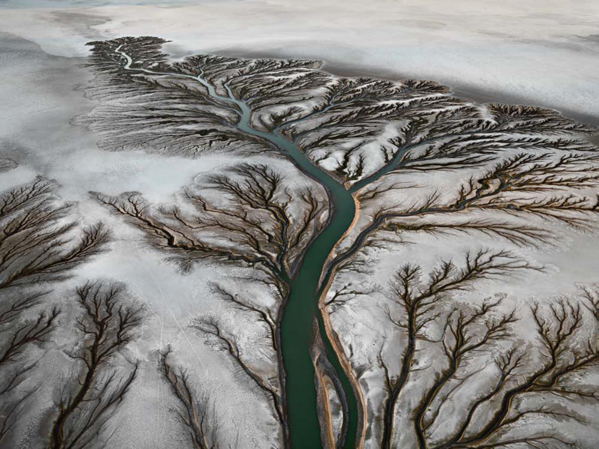 Photography - Burtynsky, Colorado River Delta