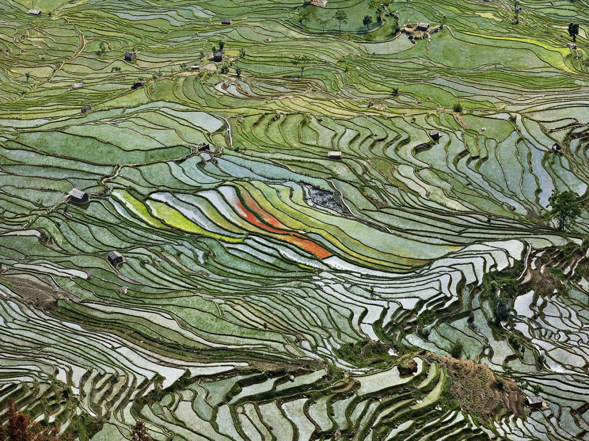 Photography - Burtynsky, Rice Terrace