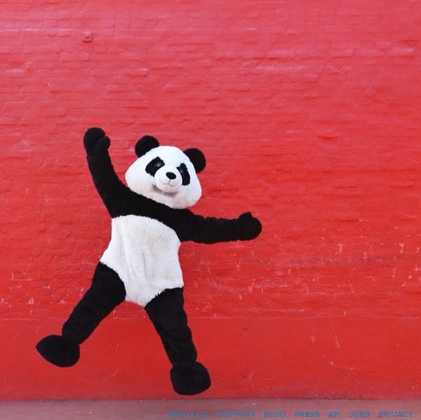 Tumblr - Red wall and panda