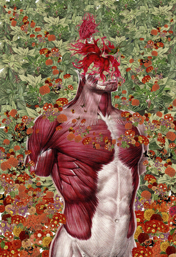 Tumblr - Travis-Bedal-Anatomical-Paper-Collages-5