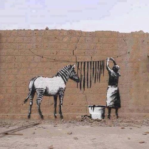 Tumblr - Banksy zebra
