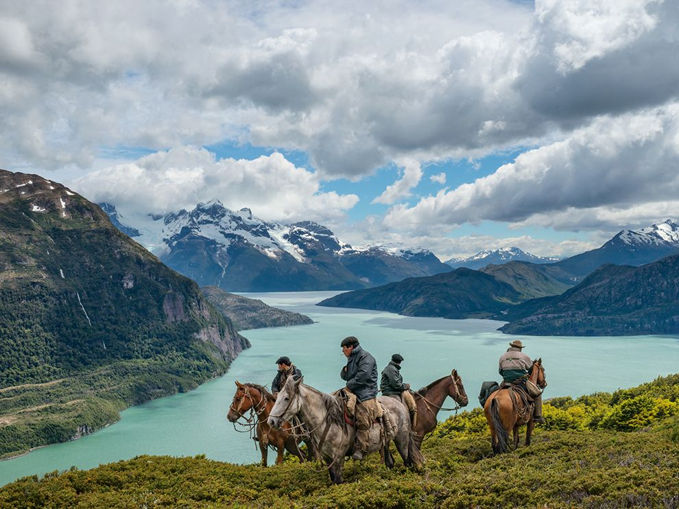 Tumblr - cowboys-patagonia-cattle-chile_85945_990x742