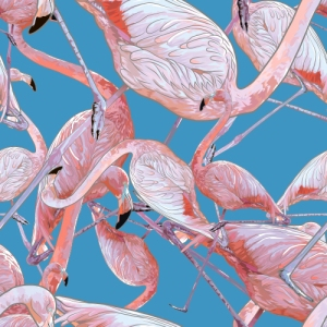Tumblr - flamingo