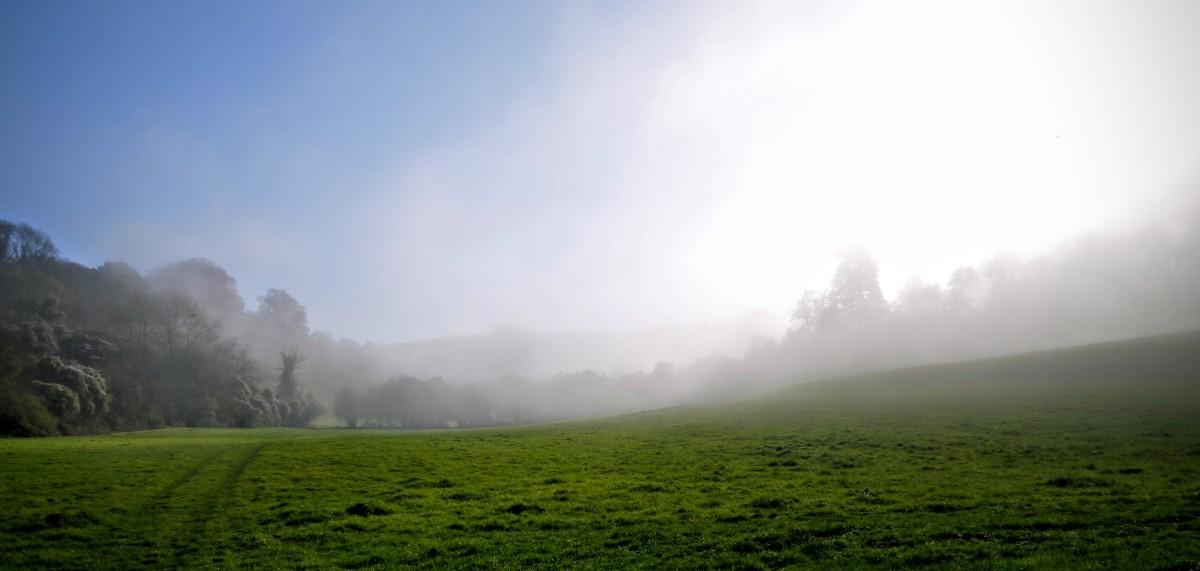 Diary - Foggy Derwent 3